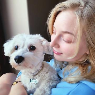 🎇 Nie strzelamy w Sylwestra! 🎆 Bezpieczeństwo Pupili przede wszystkim! 🐶❤️  #niestrzelamwsylwestra  📸 @omatkoicorko . . #niestrzelajwsylwestra  #sylwester2020  #newyear  ##nowyrok #przyjacielezwierząt #lovedog #identyfikator #dogslover  #puppy